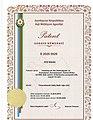 """""""Azərbaycan Narı"""" döş nişanı (Patent).jpg"""