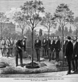 Александр II сажает дубок в Александровском саду, 1874.jpg