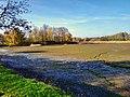 Буйволівці, пересихаюче озеро, фото 2.jpg