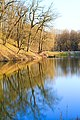 Весенние деревья, отражаюиеся в прудах парка Феофания.jpg