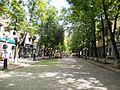 Вулиця Жовтнева (Полтава).jpeg