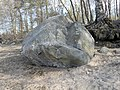 Геологический памятник - валун, расположен на берегу Финского залива у п. Мартышкино.jpg