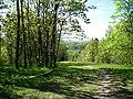 Дудергофские высоты,гора Ореховая, вид на Дудергофское оз.jpg