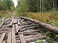Мостик - panoramio - Андрей Мухорин.jpg