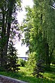 Наводницкий парк в Киеве. Фото 50.jpg