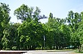 Наводницкий парк в Киеве. Фото 70.jpg