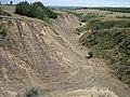 Овраг - panoramio (15).jpg