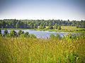 Озеро Угаринка.jpg