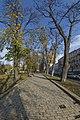 Осень в парке DSC 8036.jpg