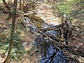 Река Журавка (40387216583).jpg