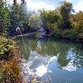 Река Пожва. Дурнятская карстовая котловина, Пермский край - panoramio (2).jpg
