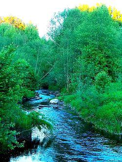 Река Сара.jpg