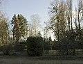 Сирецький дендрологічний парк 29.jpg