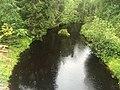 Тамбица (река, впадает в Речную губу Онежского озера).jpg