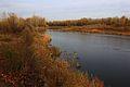Урал вниз по течению - panoramio (5).jpg