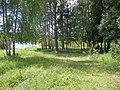 У Озернинского за Григорово - panoramio.jpg