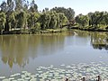 北京稻香湖景酒店内的景观河 - panoramio.jpg