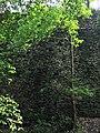 南京明孝陵景区城墙 - panoramio.jpg