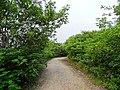 安徽省巢湖市含山县 - panoramio (291).jpg