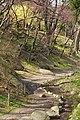 岩手公園 Iwate Park - panoramio (1).jpg