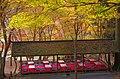 神護寺参道にて 京都市右京区 2013.11.21 - panoramio (1).jpg