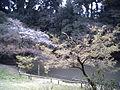 龍田公園2.JPG