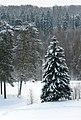 - panoramio - Andris Malygin (1).jpg