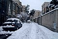 ...Winter. - panoramio.jpg
