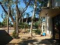 06110jfVirgen Milagrosa Rosario Seminary Balanga Bataanfvf 11.JPG