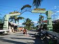 0806jfLandscapes Welcome Vegetables Roads Binagbag Angat Bulacanfvf 23.JPG