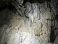 110 Cova de Sant Miquel del Fai, paret calcària.JPG