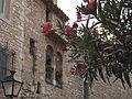 116 Palau del Rei Moro, façana de la muralla.jpg