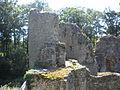 12 08-08 Château de Ranrouët 051.jpg