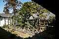 170304 Kameyamahontokuji Himeji Japan33n.jpg