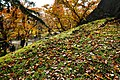 171103 Morioka Castle Morioka Iwate pref Japan16bs3.jpg