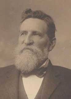 Allan McLean (Australian politician) Australian politician