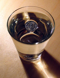 2006-01-15 coin on water retouched.jpg