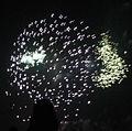 2006 Fireworks 4.JPG