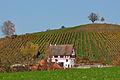 2011-11-06 14-30-46 Switzerland Kanton Schaffhausen Dörflingen, Underberg.jpg