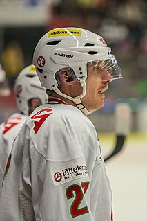 Peter Öberg (ice hockey) Swedish ice hockey player