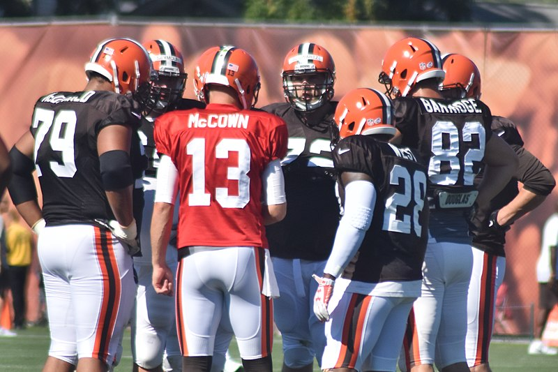 File:2015 Cleveland Browns Training Camp (19625534493).jpg