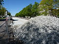 2015 tram tracks replacement in Tallinn 028.JPG