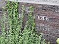 2017-09-10 Friedhof St. Georgen an der Leys (165).jpg