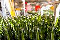 21. Botellas para zumos y vino, de color verde, a partir del calcín conseguido con la aportación del vidrio por todos los ciudadanos.jpg