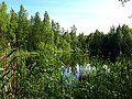2180. Lake Karasyovoe in the park Sosnovka.jpg