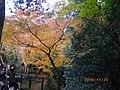 2 Minookōen, Minoo-shi, Ōsaka-fu 562-0002, Japan - panoramio (2).jpg