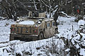 2nd CR Field Support Troop Logistics Convoy 150127-A-EM105-948.jpg