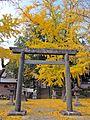 2nd Torii gate of Taga-jinja shrine in Taihaku ward,Sendai city.JPG