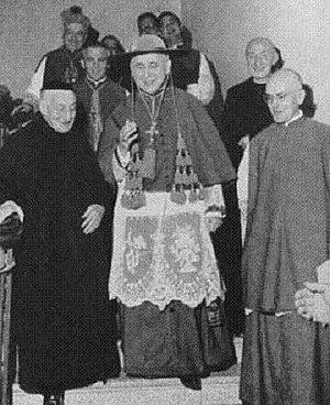 Galero - Archbishop Giovanni Colombo wearing a galero with ten green tassels on each side.