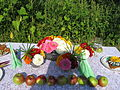 7 Zámek Veltrusy, kuchyňská zahrada.jpg